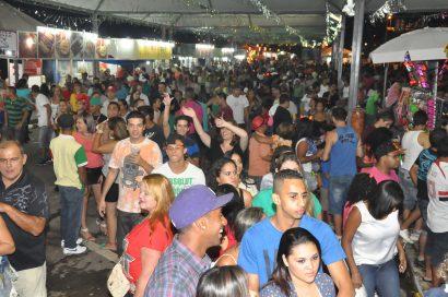 carnaval2014(11)